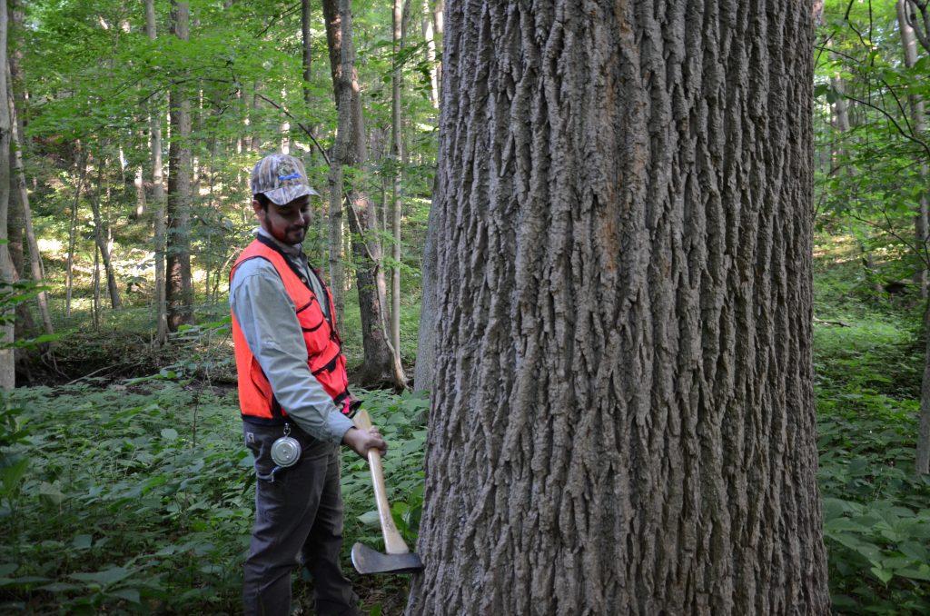 Pike Lumber News - Pike Lumber